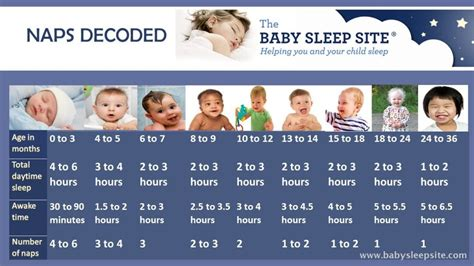 baby nap chart how many naps and how should they be
