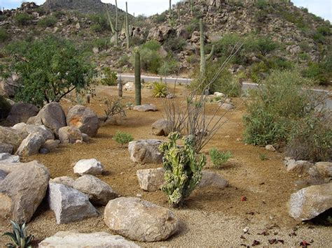 az landscaping top 28 arizona landscaping arizona landscape hualapai canyon kelli williams flickr pin