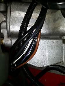 89 Xjs Abs Wiring Harness Short - Jaguar Forums