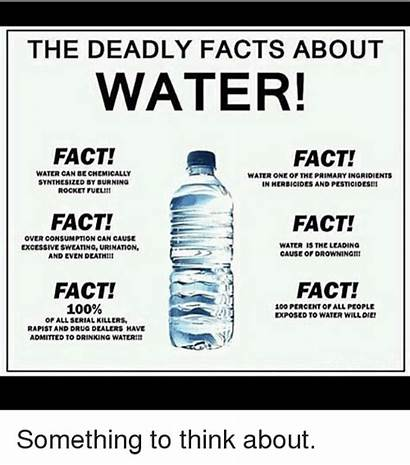 Water Facts Deadly Fact Meme Drug Drinking