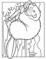 Beaver Coloring Lodge Printable Designlooter 1100px 78kb Getcolorings Coloringbay Coloring2print sketch template