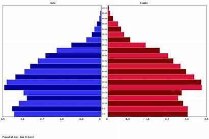 Vietnam Population Vietnamese Age Pyramid Structure Chart
