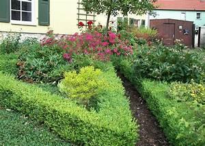 Wann Wird Lavendel Geschnitten : buxus sempervierens buchsbaumhecke im bauerngarten ~ Lizthompson.info Haus und Dekorationen
