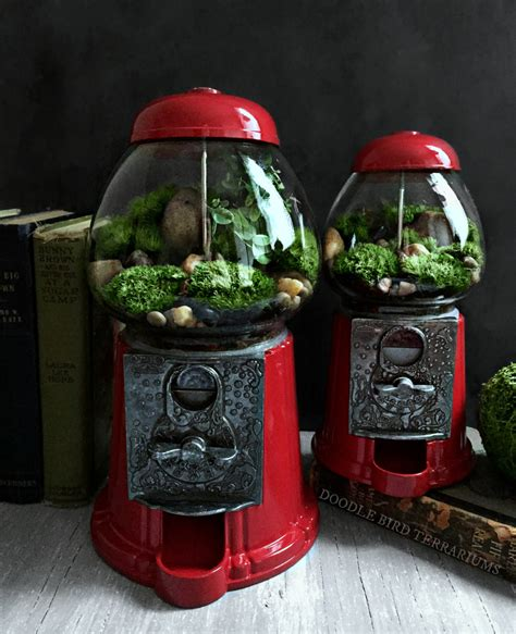 amazing diy miniature terrariums   upcycled