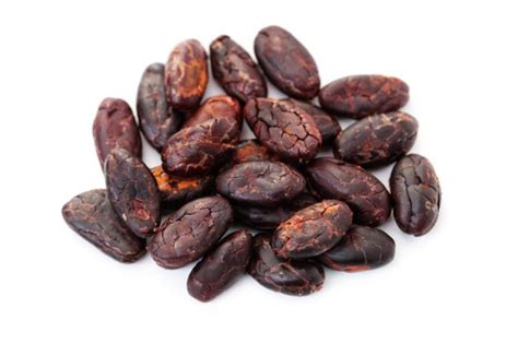 cocoa hold  key  alzheimers prevention