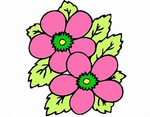 Desenho de flores primavera pintado e colorido por