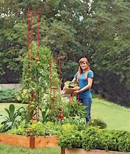 Treillis Pour Plantes Grimpantes : les 25 meilleures id es de la cat gorie treillis de jardin ~ Premium-room.com Idées de Décoration