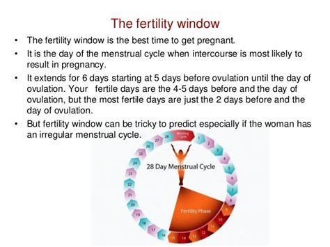 Best Time To Get Your Ovulation Day To Get
