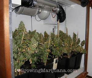 Small Room Design: small indoor grow room ideas Small
