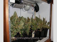 How To Build An Indoor Marijuana Grow Room
