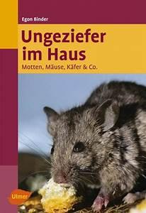 Motten Im Haus : bei maus haus zvab ~ Orissabook.com Haus und Dekorationen