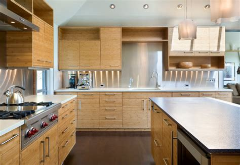 lights for cabinets in kitchen park remodel contemporary kitchen seattle 9695