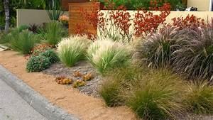 good looking purple fountain grass fashion san diego With good grosse pierre decoration jardin 6 jardin de cure