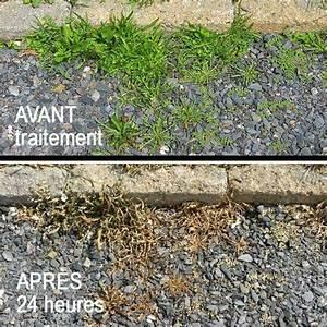 Traitement Mauvaise Herbe : herbicide maison voici une recette pour traiter les mauvaises herbes dans les entr es ~ Melissatoandfro.com Idées de Décoration