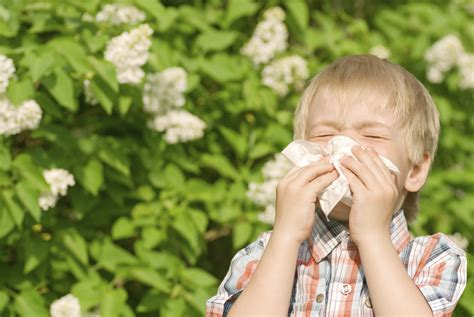 Natural Remedies For Childrens Allergies