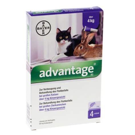 advantage fuer katzen und zierkaninchen guenstig kaufen bei