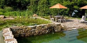 Comment construire sa piscine naturelle : avantages et