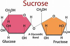 What is Fructose? Why is High Fructose Corn Syrup Bad?  Glucose