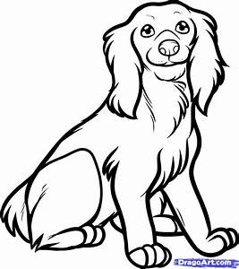 Spaniel Cocker Colouring Pages