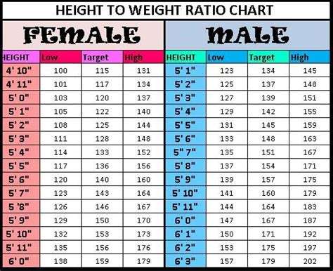 Height To Weight Chart  Height Weight Charts And Weight