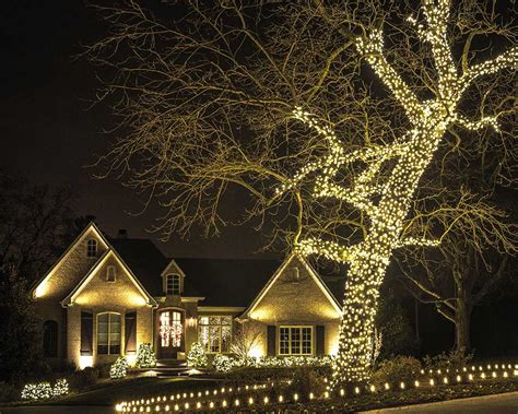 christmas tree in lights christmas decor is our specialty light up nashville 5101