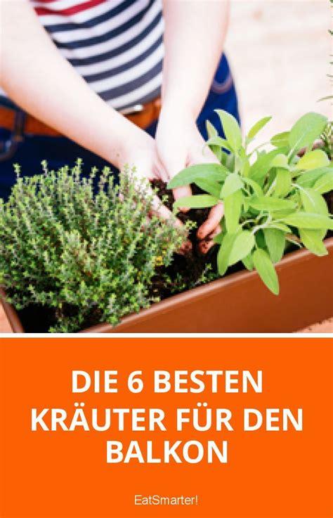 Balkonpflanzen Gegen Mücken by Die 6 Besten Kr 228 Uter F 252 R Den Balkon Balkon Garten
