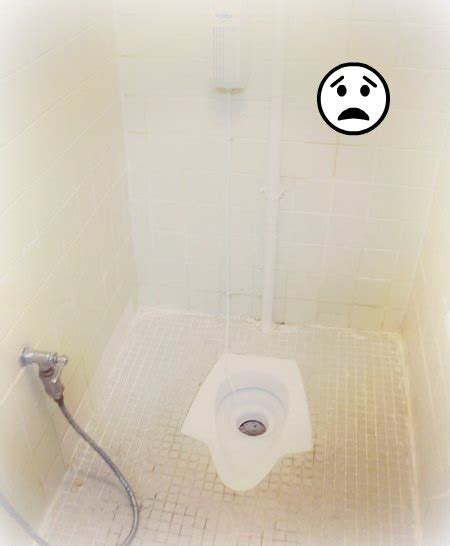 Eastern Water Closet by The Eastern Toilet Bring Toilet Paper Hajj Journal