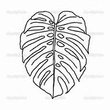 Philodendron Tropical Leaf Plant Coloring Depositphotos Royalty Illustration St2 Vector Leaves Pages Shutterstock Google Drawing Millions Vectors Flores Grandes Plants sketch template