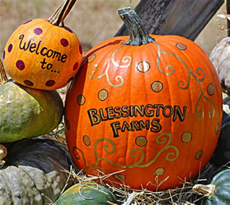 Pumpkin Patch Near Spring Tx by Wimberley Search Results The Daytripper