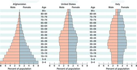 Age Structure Diagram by Quia 9ap Chapter 53 Population Ecology Detailed