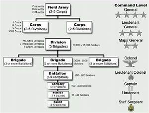 What Is The Command Hierarchy For A Typical Army