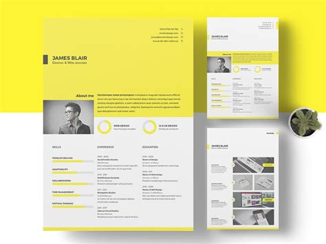 Resume Template Indesign by Free Resume Template Free Indesign Templates