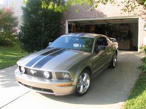 What color stripes on a 08 Vapor GT - The Mustang Source - Ford Mustang Forums