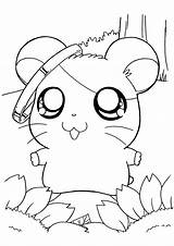 Coloring Pages Hamtaro sketch template