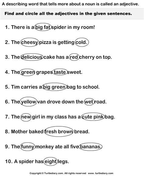 adjectives  sentences worksheet turtle diary