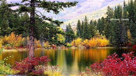 Beautiful Scenery (HD1080p) - YouTube