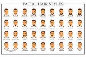 Facial Hair Types Stock Vector  Illustration Of Male