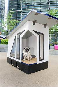 Students saved from doghouse, thanks to top designs