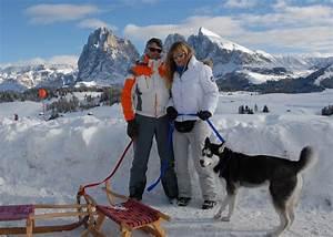 Urlaub Mit Hund Urlaub Sdtirol