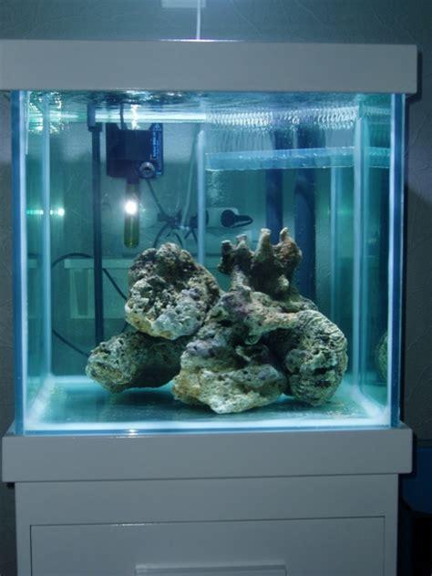 mise en route aquarium eau de mer