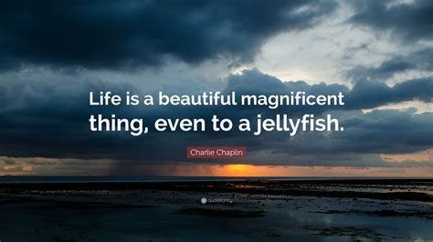 charlie chaplin quote life   beautiful magnificent