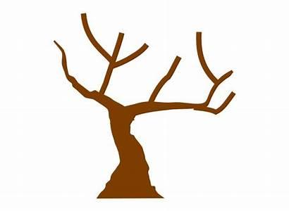 Tree Clipart Trunk Fall Trunks Clip Clker