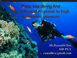 Deep Sea Diving And Physiological Response To High