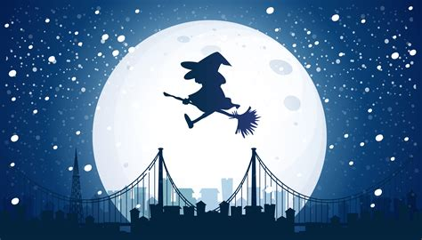 witch flying   moon   vectors