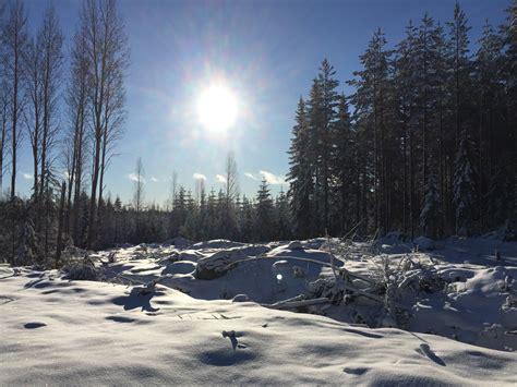 kostenlose foto landschaft baum natur wald berg