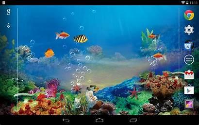 Pc Windows Bergerak Aquarium Wallpapersafari