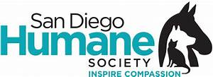 WHOLE Lot of Difference: San Diego Humane Society | Halo Pets
