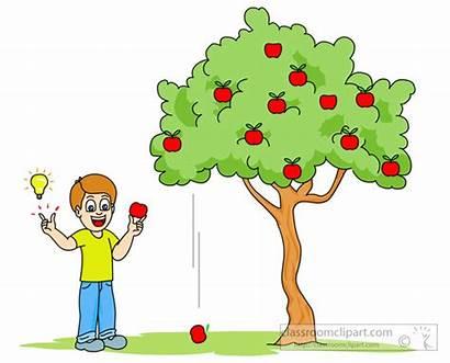 Apple Falling Gravity Tree Clipart Science Newton