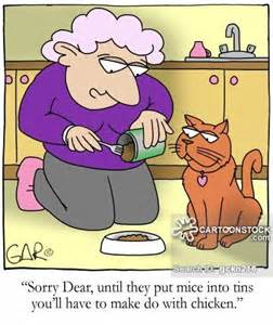 Funny Cat Lady Cartoon