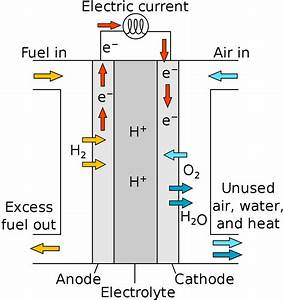 File Proton Exchange Fuel Cell Diagram Svg